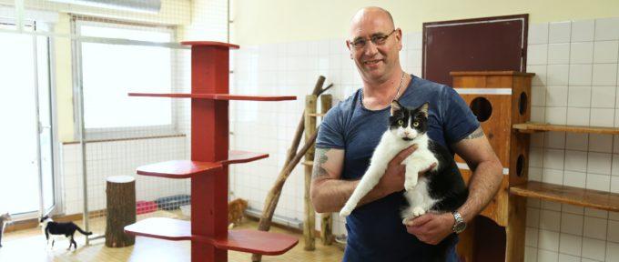 SPA: «Accueillir les animaux avec tout l'amour dont ils ont besoin»