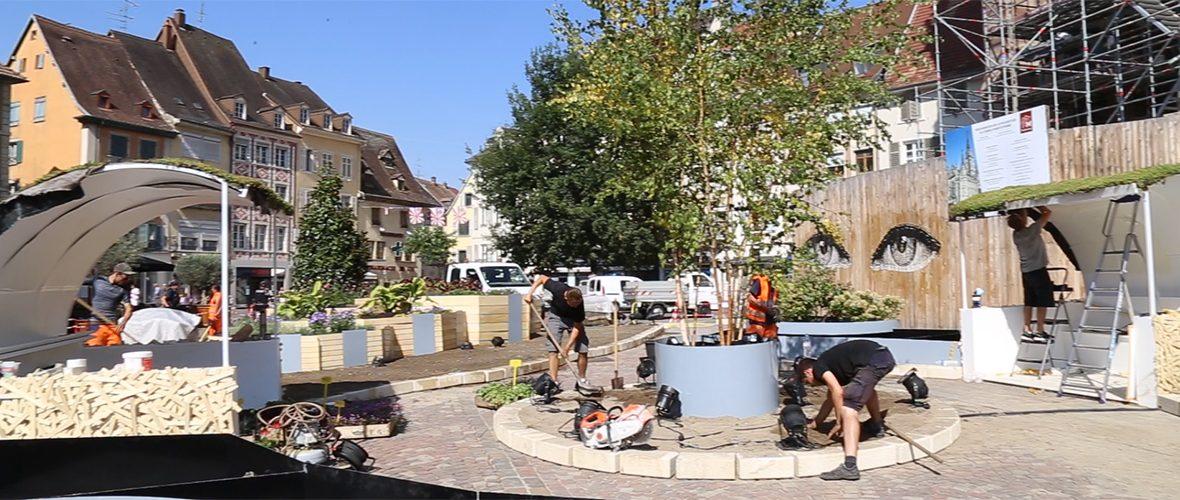VIDEO : le Jardin éphémère prend ses aises, place de la Réunion | M+ Mulhouse