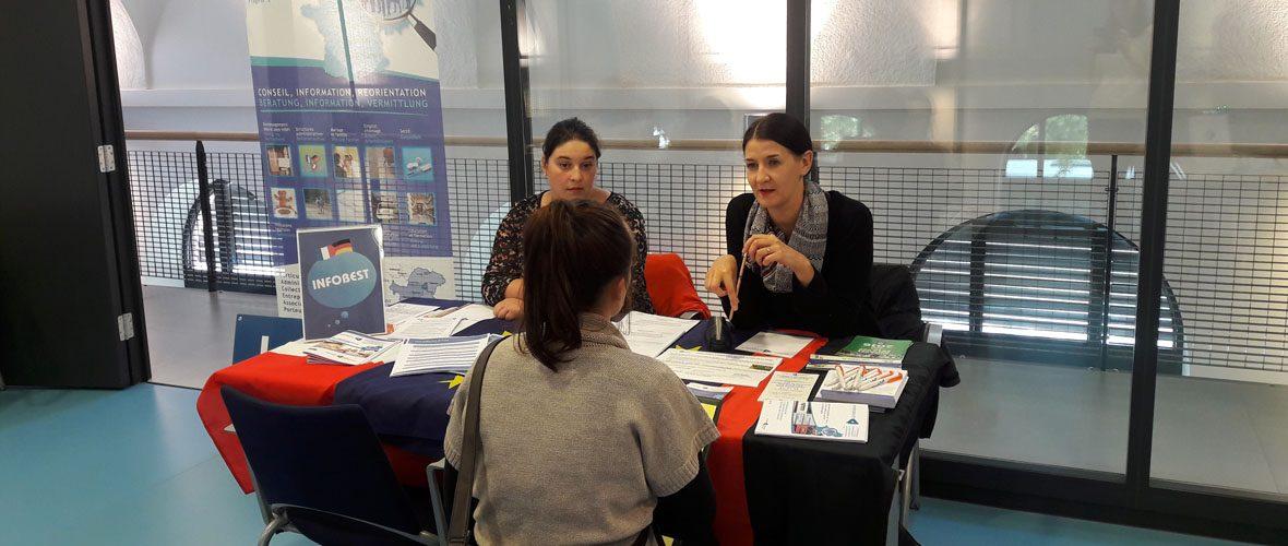 Développer l'emploi des français outre-Rhin   M+ Mulhouse
