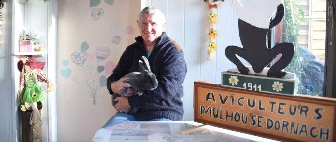 Les aviculteurs de Mulhouse tiennent salon