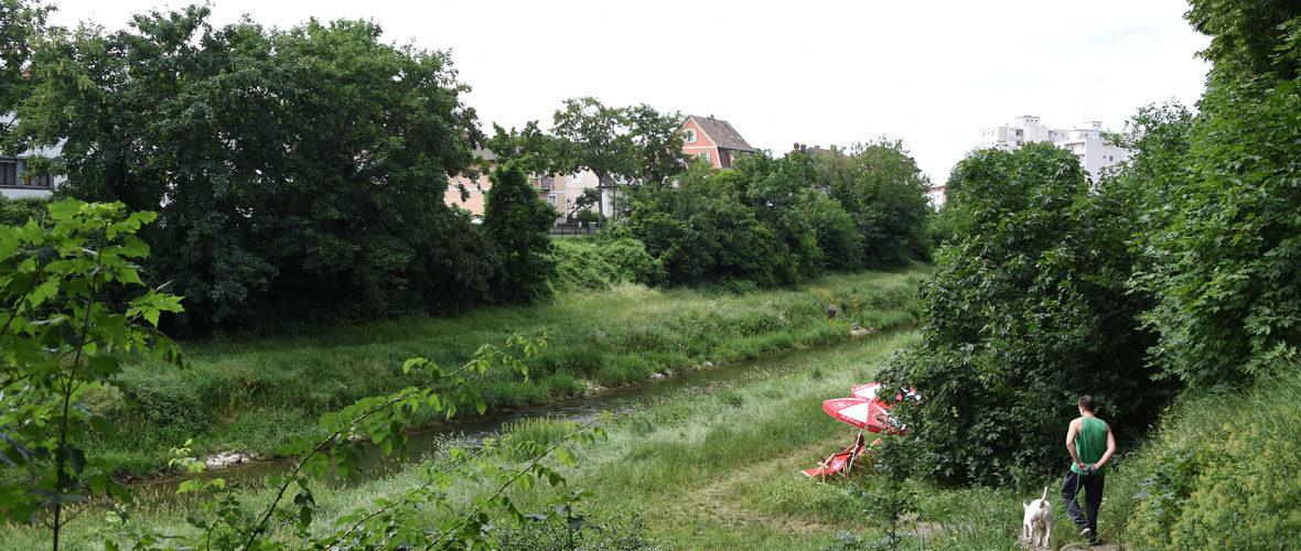Mulhouse Diagonales est lancé | M+ Mulhouse