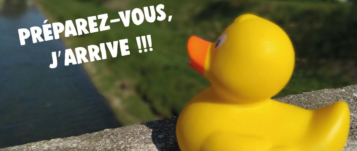 Duck Race : 770 m de course pour 12 000 canards en… plastique !