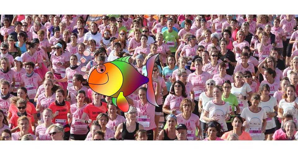 Course-marche Les Mulhousiennes: de 8000 à 80000 participantespour le cru 2019 ! | M+ Mulhouse