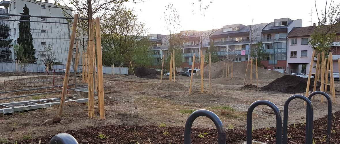 Jardins Neppert: quatre nouveaux «poumons verts» et des voiries repensées | M+ Mulhouse