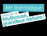 M+ supplément thématique : « Mulhouse, grandeur nature ! »