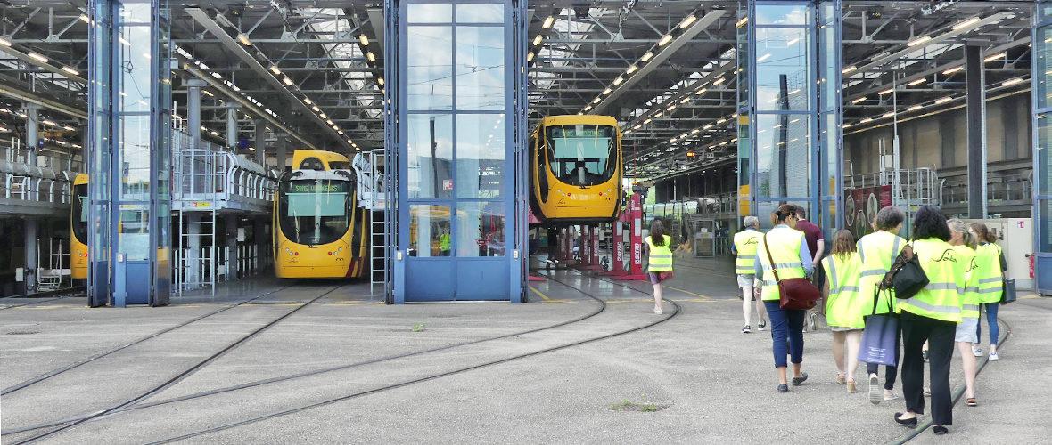 Tourisme : les entreprises ouvrent leurs portes | M+ Mulhouse
