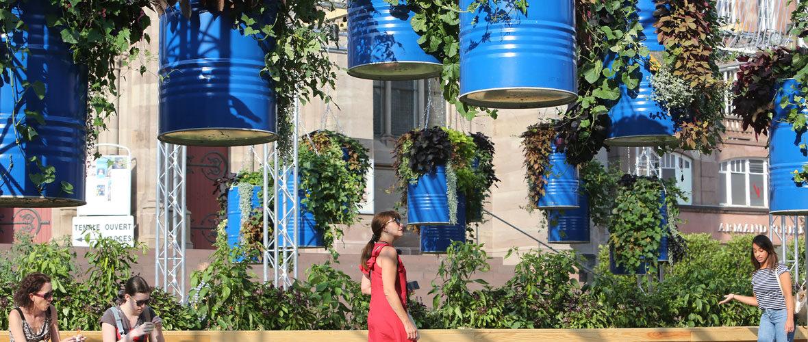 Un magnifique Jardin éphémère, au cœur de Mulhouse   M+ Mulhouse