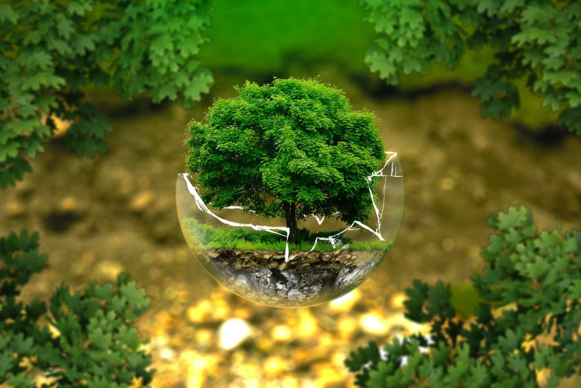 Atelier - élaboration charte environnementale Enjoy'in hostel