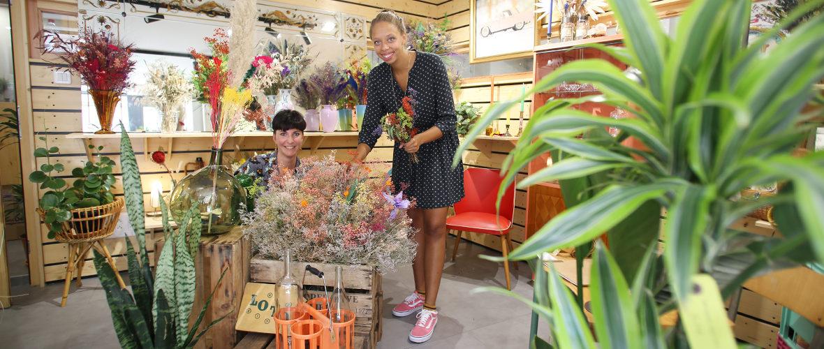 Commerce: la rentrée des nouveautés | M+ Mulhouse