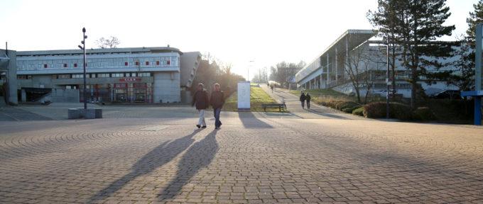 Université:«Proposer une offre large et complémentaire de formation»