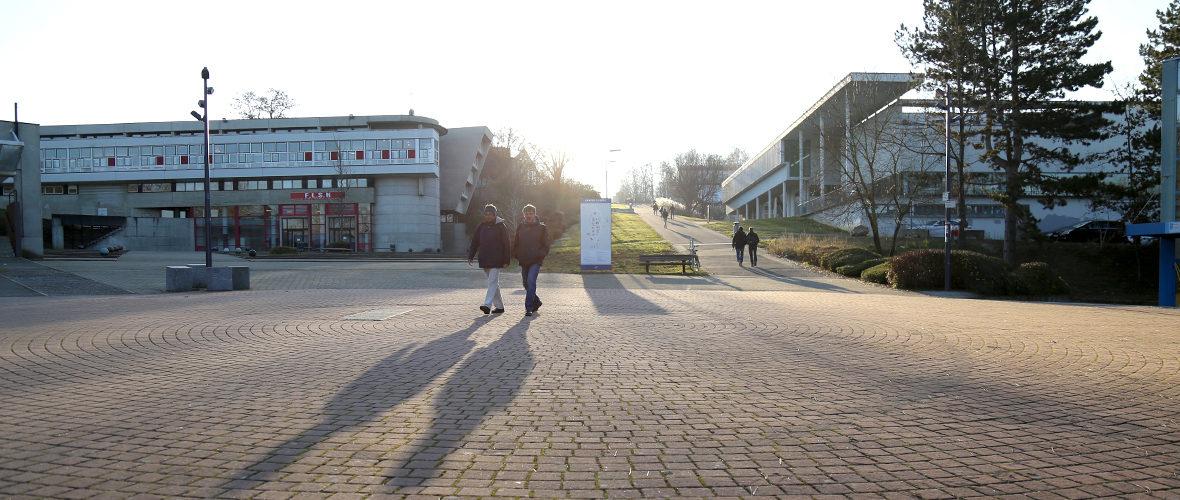 Université:«Proposer une offre large et complémentaire de formation» | M+ Mulhouse