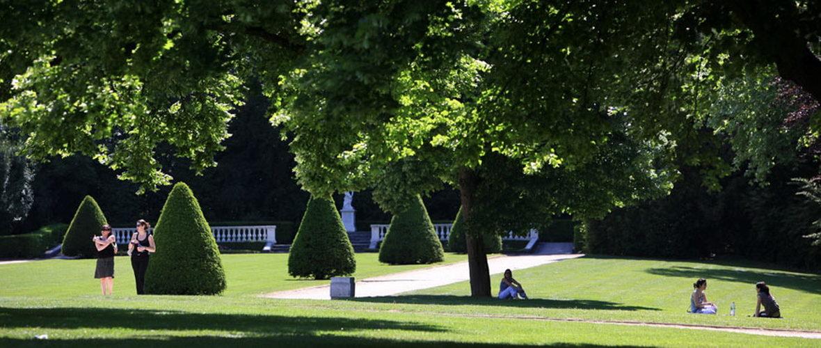 Confinement : le préfet du Haut-Rhin interdit l'accès aux parcs, jardins publics, forêts et autres lieux publics extérieurs propices aux rassemblements | M+ Mulhouse