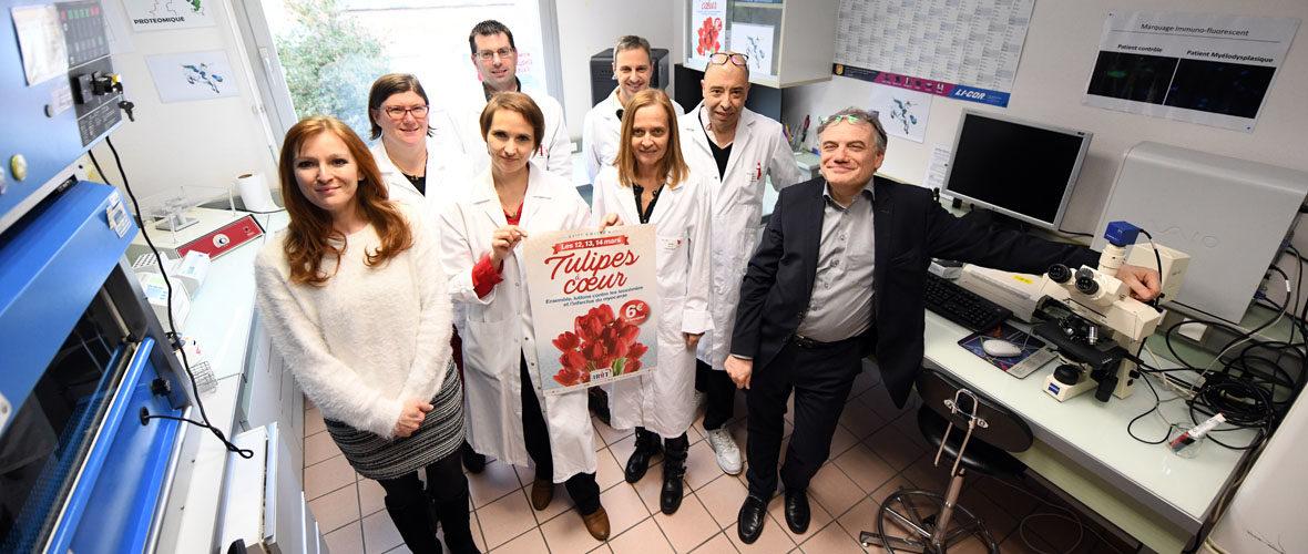 IRHT : des tulipes pour développer la recherche | M+ Mulhouse