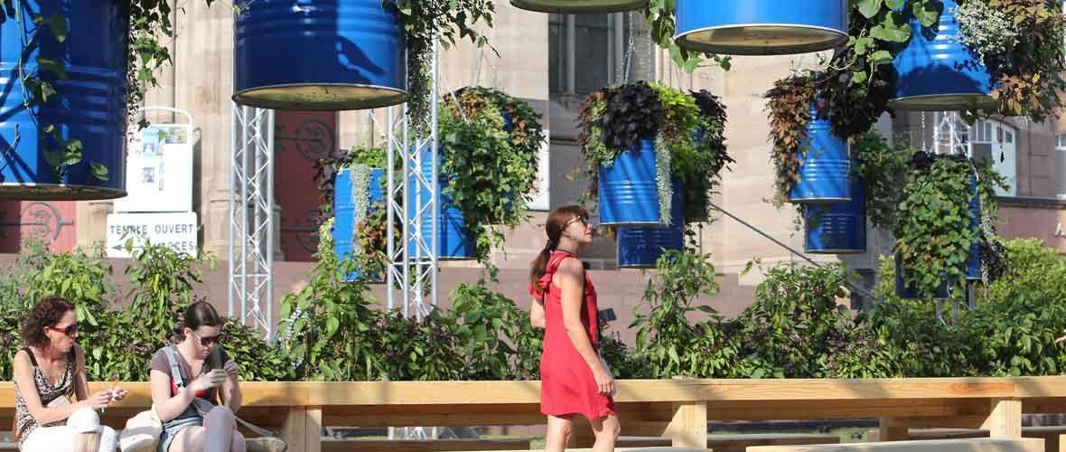 Le Jardin éphémère investit le centre-ville