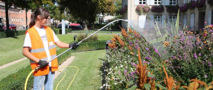 200 jobs d'été à pourvoir à la Ville de Mulhouse