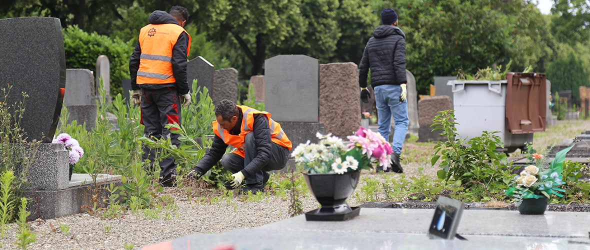 L'entretien des espaces verts et des cimetières, après le confinement | M+ Mulhouse