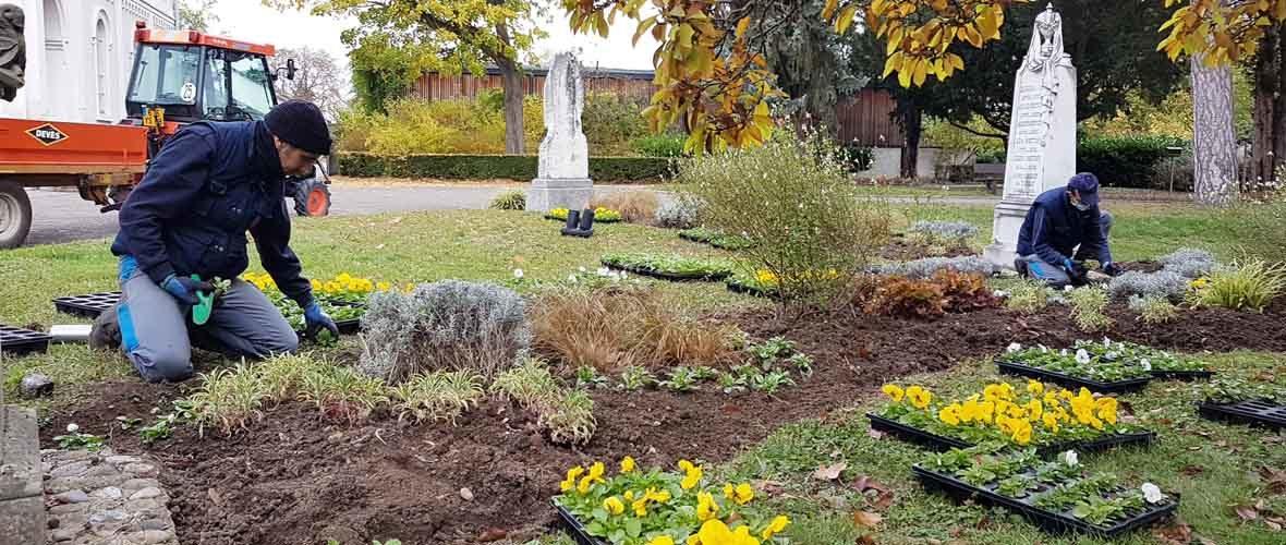 Toussaint: mobilisation dans les cimetières municipaux | M+ Mulhouse