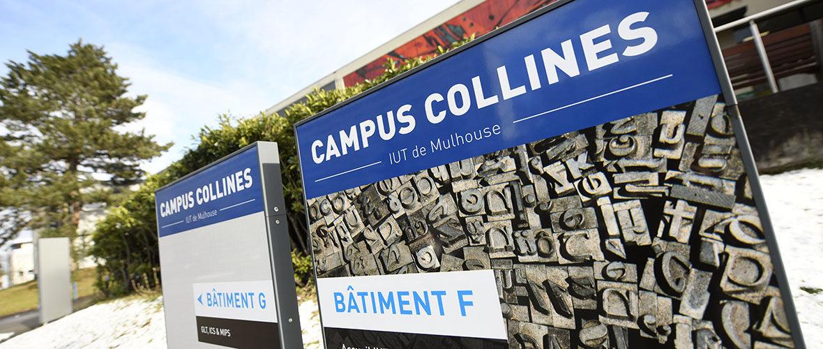 Formation : les IUT lancent le Bachelor universitaire de technologie | M+ Mulhouse