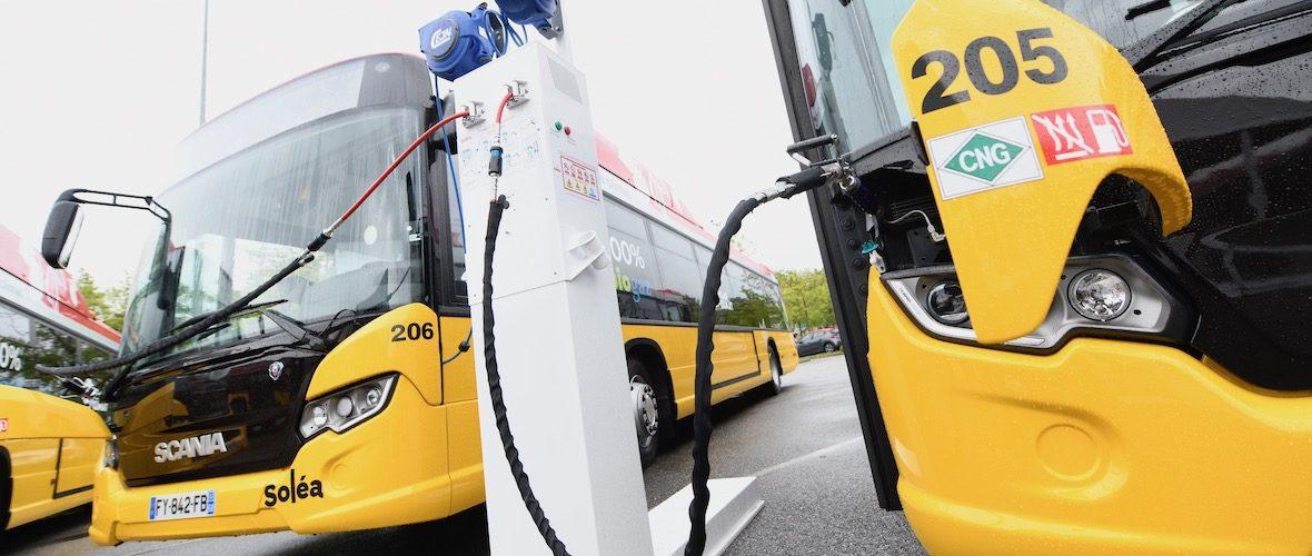 Transports : Soléa déploie ses bus au biogaz   M+ Mulhouse