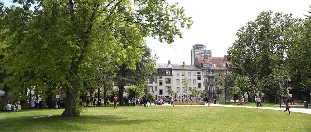 Neppert: la Promenade des quatre saisons inaugurée, en attendant l'été… | M+ Mulhouse