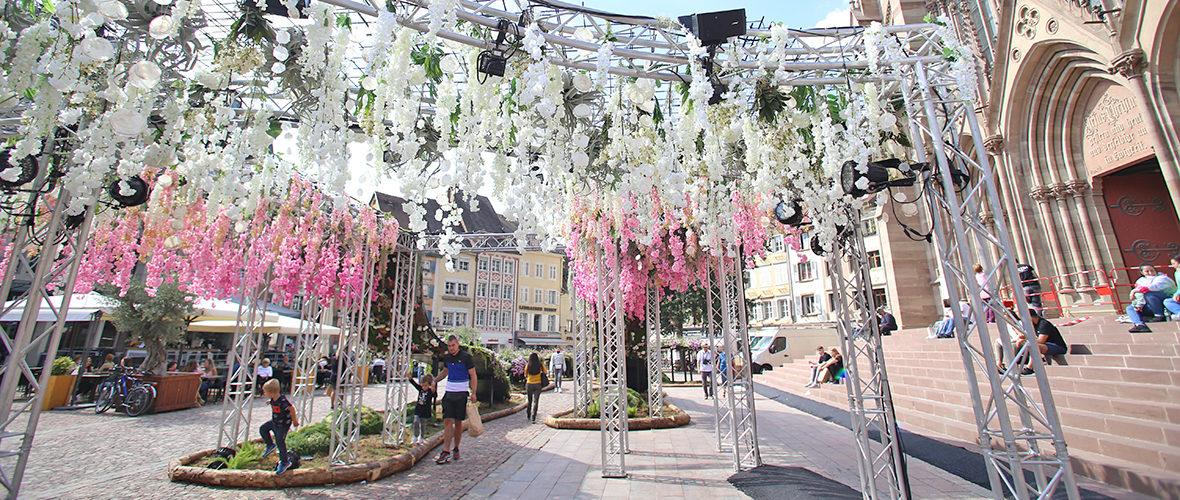 Jardin éphémère: une vague de fleurs déferle, place de la Réunion   M+ Mulhouse